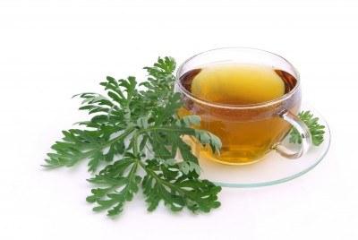 tea-wormwood
