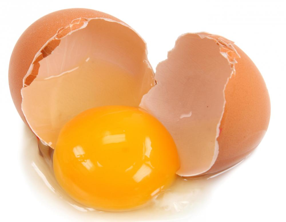Raw Egg Yolk – Treatment for Numerous Health Conditions