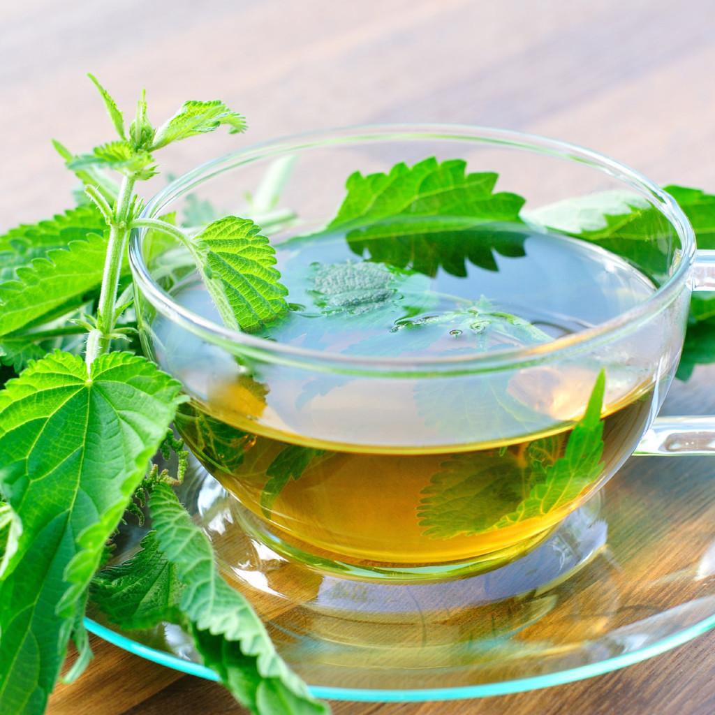 Natural Remedies For Nasal Allergies Top Natural Remedies