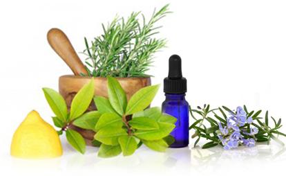 Eucalyptus Oil Natural Antibiotic