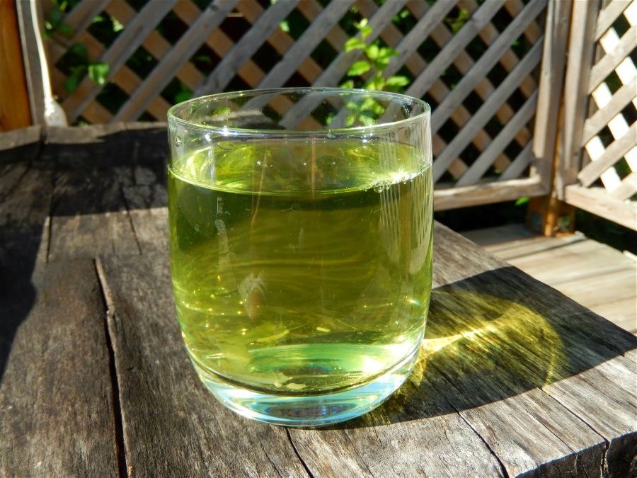 The Many Health Benefits of Artichoke Tea
