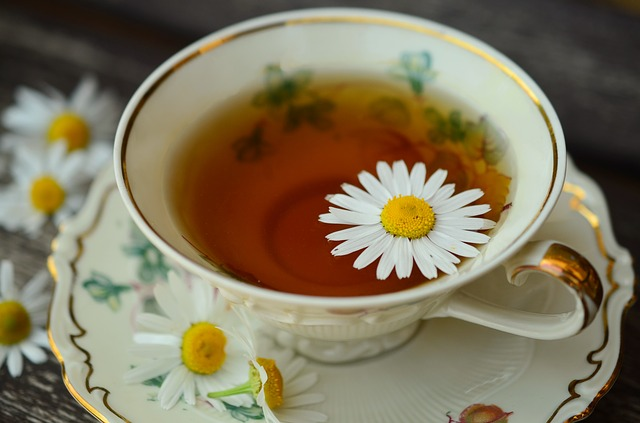 chamomile tea for cancer