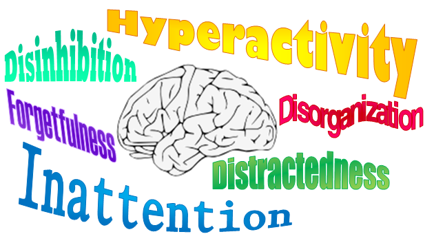 Attention Deficit Disorder In Adults Natural Treatment