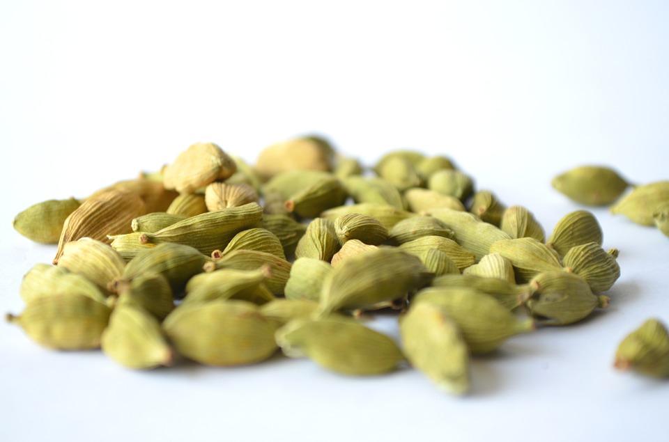 herbs for high blood pressure